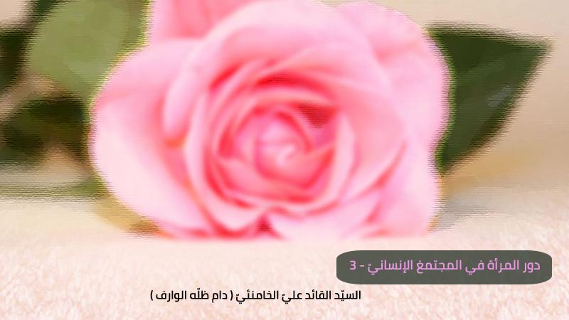 دور المرأة في المجتمع الإنساني -3