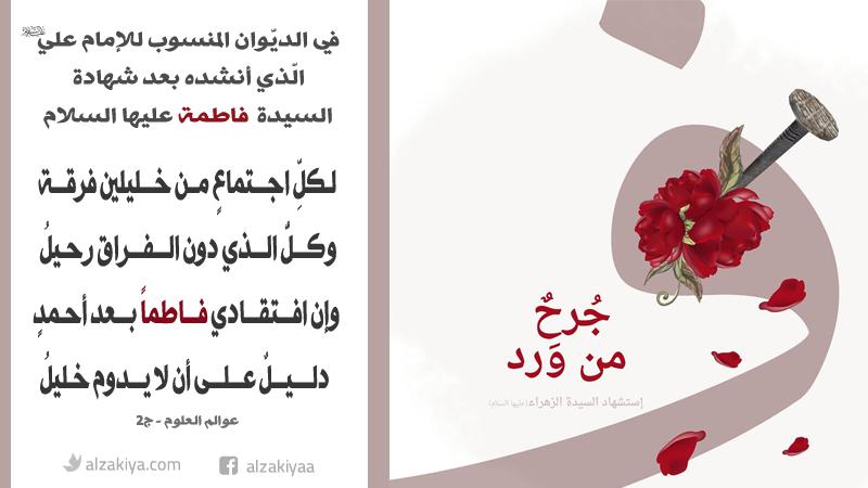 في الديّوان المنسوب للإمام علي عليه السلام  الذي أنشده بعد شهادة السيدة فاطمة عليها السلام
