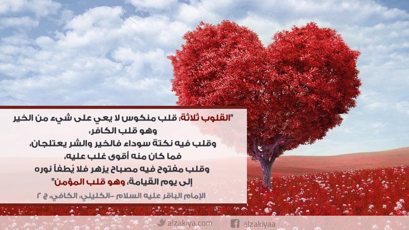 حقيقة القلب