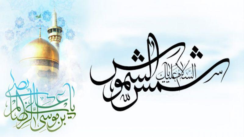 الإمام الرضا عليه السلام في كلام الولي دام ظله